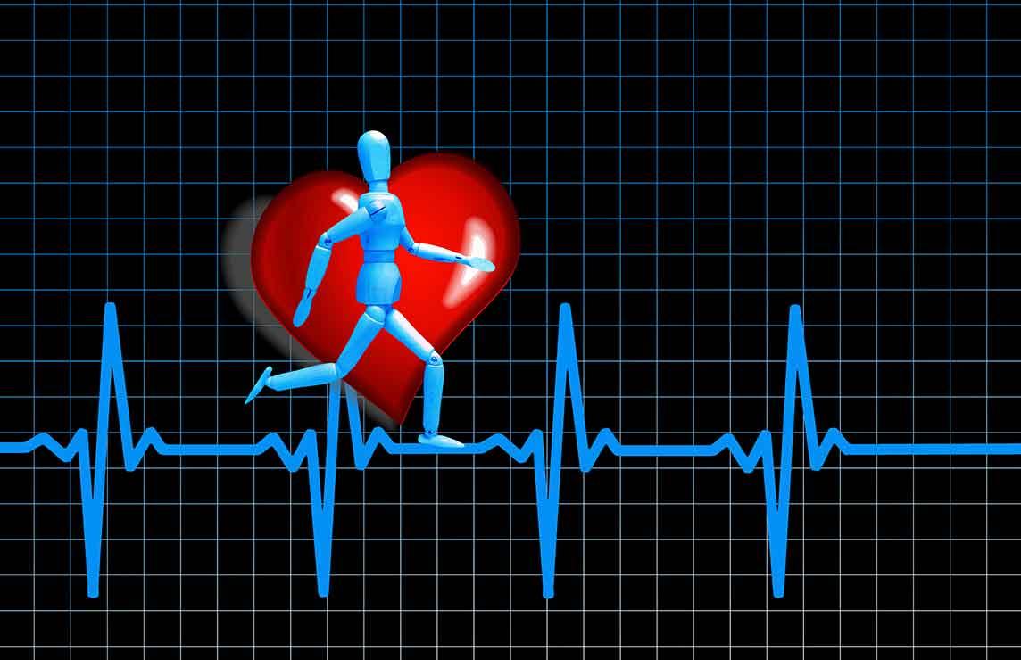 Trainingssteuerung Leistungsdiagnostik Sportler